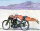 avatar_osoerli